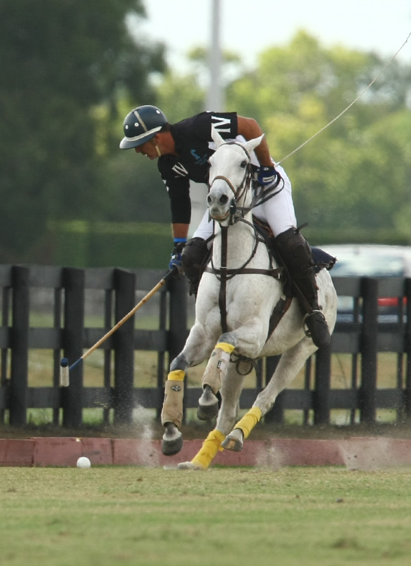 Polo Photos-USPA National 20-goal
